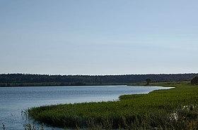 фото круглое озеро московская область