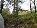 Крутой спуск. - panoramio - Pesotsky (1).jpg