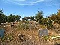 Курган на Широківському кладовищі 05.JPG