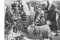 М.Андриолли.Вождение козы.2-я пол.XIX в..png