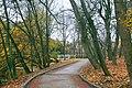 Національний дендрологічний парк «Софіївка15.jpg