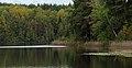Озеро Светлое (Чувашия) 03.jpg