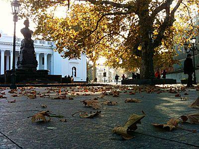 Осінь у Одесі.jpg