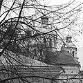 Свято-Воскресенський кафедральний собор (Рівне) за гілками.jpg
