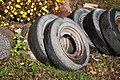 Тешевицы, аутентичные колеса (10623513736).jpg