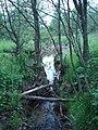 Тут можно перешагнуть реку Десна - panoramio.jpg