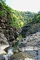 קניון הבזלת בנחל זוויתן בשמורת יער יהודיה.jpg