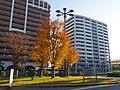 光明池駅前バスのりばにて Kōmyōike station 2012.12.14 - panoramio.jpg