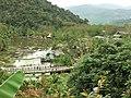 呀诺达雨林公园中的人工湖 - A Pond in Yanoda Rainforest Tourism Zone - 2010.02 - panoramio.jpg