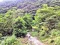 惠州博罗红花嶂越野穿越-大救援20140524-25 - panoramio (6).jpg