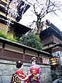 明保野亭前之藝妓 Geisha Girls in front of Akebo Inn - panoramio.jpg