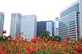 浜離宮, Flower and Buildings, Hamarikyu Park - panoramio.jpg