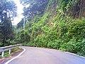 県道76号 - panoramio.jpg