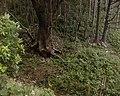 石神(地蔵)峠 - panoramio.jpg