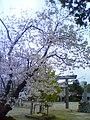 豊田市高岡町 - panoramio.jpg