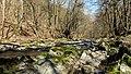 -07 Naturschutzgebiete in Thüringen Schwarzatal 159.jpg