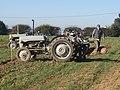 -2018-10-20 Massey Ferguson tractor, Trimingham Trosh 2018 (1).JPG