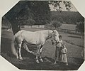 -Thomas Eakins's Horse Billy and Two Crowell Children at Avondale, Pennsylvania- MET DT8259.jpg