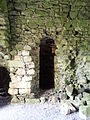 06. Ballyloughan Castle, Co. Carlow.jpg