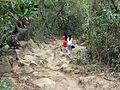 100 Hiking Through Tayrona Colombia.JPG