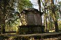 1472vik Cmentarz żydowski przy ul. Lotniczej. Foto Barbara Maliszewska.jpg