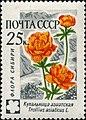 1960 CPA 2496.jpg