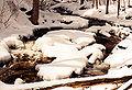 1997-12-bruce-trail-river.jpg