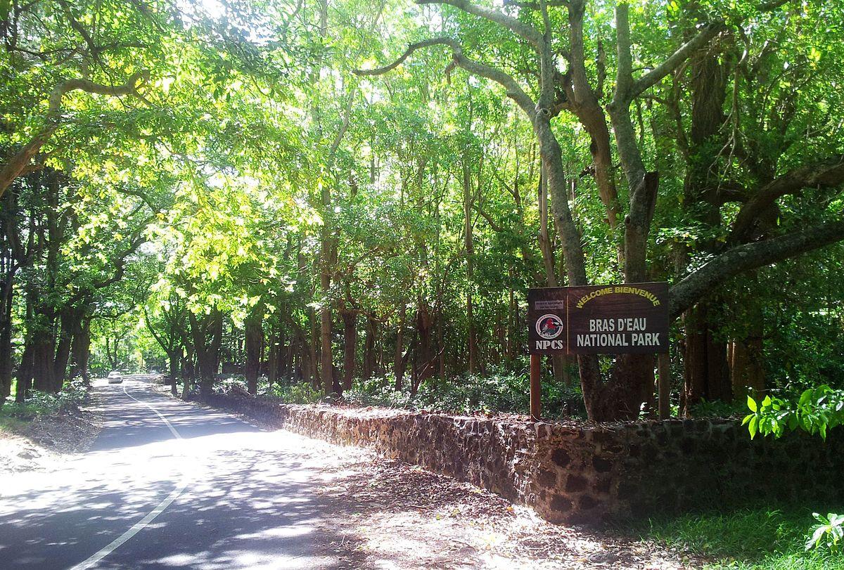 Black River Nature Preserve Field Trip
