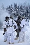 2-377 PFAR paratroopers conduct live fire-cold weather training 170119-F-YH552-055.jpg