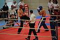 2010-02-20-kickboxen-by-RalfR-08.jpg