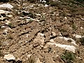 2013-09-09 14 59 52 Erosion from recent thunderstorms on the slopes at 9480 feet while descending from Verdi Peaks back to Terraces Picnic Area.jpg