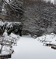 20130119 - Paris - jardin naturel 02.jpg