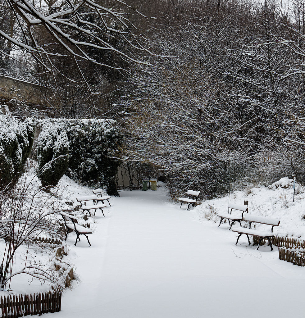 File 20130119 paris jardin naturel wikimedia for Jardin 02