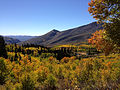 2014-10-04 14 08 21 View of Subalpine Firs, Aspens during autumn leaf coloration and ponds from Charleston-Jarbidge Road (Elko County Route 748) in Copper Basin about 11.2 miles north of Charleston, Nevada.JPG