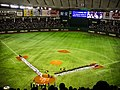 2014 MLB Japan All-Star Series.jpg