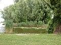 2015-05-21 Mantova, fiume Mincio 18.jpg