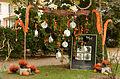2015-10-17 11-22-04 marche-plantes-belfort.jpg