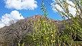 2015.04.09 14.45.08 - Flickr - andrey zharkikh.jpg