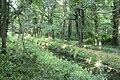 2019-07-03 Bolscherbeek tussen bomen Kerspel Goor.jpg