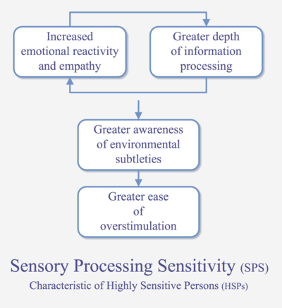 Sensory processing sensitivity - Wikipedia