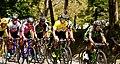 2 Etapa-Vuelta a Colombia 2018-Ciclistas Peloton 5.jpg