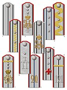 3. Doctor's shoulder boards (M.1908).jpg