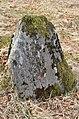 60625 Bautastein på Hovland fra RA.jpg