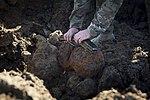 628th CES dispose of Civil War-era cannonballs 161122-F-YC711-038.jpg