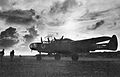 6th Fighter Squadron - P-61 Black Widow - 2.jpg