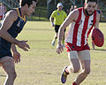 AFL Bond University Bullsharks (18146640575).jpg