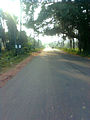 A Road near Padmanabham.jpg