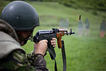A Romanian soldier engages a target during a live-fire exercise June 5, 2013, in Dej, Romania, as part of Black Sea Rotational Force (BSRF) 13 130605-M-HO284-005.jpg