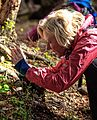 A day trip from Ushuaia into Parque Nacional Tierra del Fuego - Anna in action.!! - (25094700211).jpg