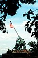 A view of the United States Marine Corps War Memorial - DPLA - 4f3a3f15e9f34be79ccb273a7c46f9c0.jpeg